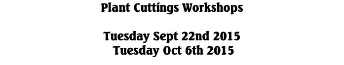 Plant Cuttings Workshops  Tuesday Sept 22nd 2015  Tuesday Oct 6th 2015